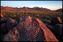 Petroglyphs on Signal Hill and Tucson Mountains at sunset. Saguaro National Park ( color)