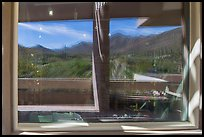 Tucson Mountains and cactus, Red Hills Visitor Center window reflexion. Saguaro National Park ( color)