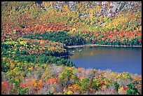 Eagle Lake, surrounded by slopes in fall foliage. Acadia National Park ( color)