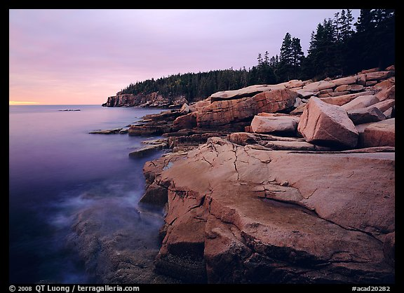 Pink granite slabs on the coast near Otter Point, sunrise. Acadia National Park (color)