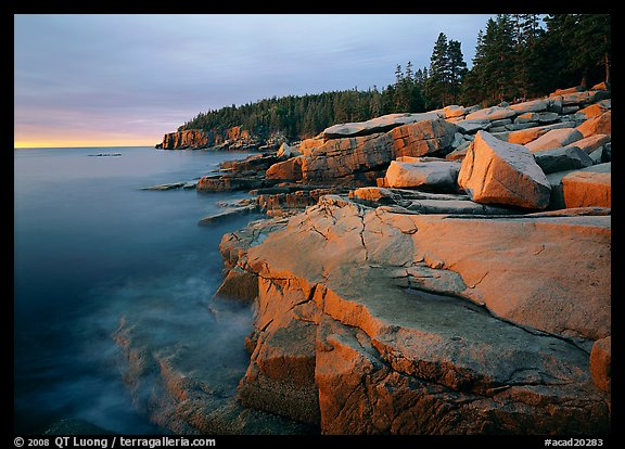 Granite slabs and Otter Point at sunrise. Acadia National Park, Maine, USA.