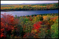 Eagle Lake and autumn colors. Acadia National Park, Maine, USA.