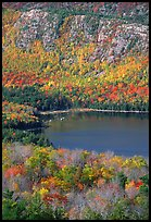 Eagle Lake, surrounded by hillsides covered with colorful trees in fall. Acadia National Park ( color)