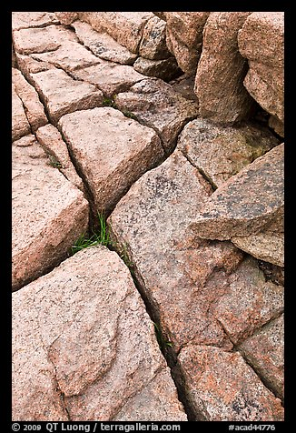 Pink granite slab with cracks. Acadia National Park (color)