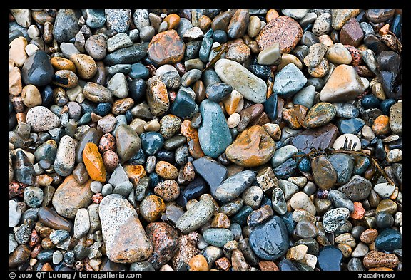 Wet pebbles, Hunters beach. Acadia National Park (color)