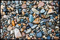 Wet pebbles, Hunters beach. Acadia National Park, Maine, USA.