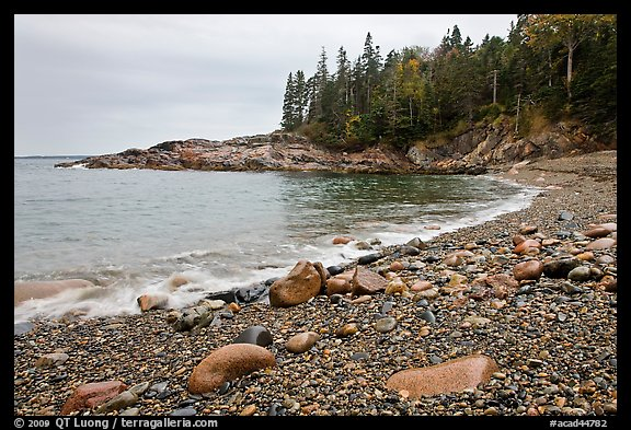 Hunters cove in rainy weather. Acadia National Park, Maine, USA.