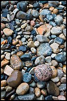 Close-up of multicolored pebbles. Acadia National Park, Maine, USA. (color)