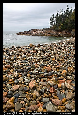 Pebbles and cove, Hunters beach. Acadia National Park (color)