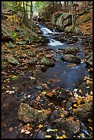 Stream in autumn. Acadia National Park, Maine, USA. (color)