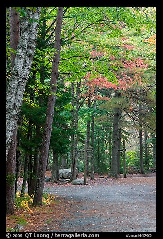 Trail marker signs in the fall. Acadia National Park, Maine, USA.