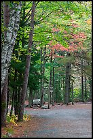 Trail marker signs in the fall. Acadia National Park ( color)