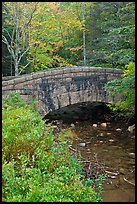 Stone bridge over stream. Acadia National Park, Maine, USA. (color)