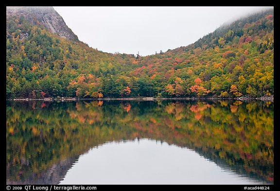 Hill curve and trees in fall foliage reflected in Jordan Pond. Acadia National Park (color)