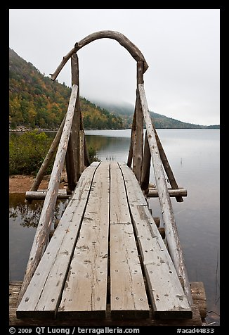Footbridge and fog in autumn. Acadia National Park, Maine, USA.