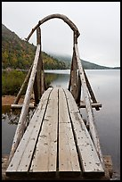 Footbridge and fog in autumn. Acadia National Park, Maine, USA. (color)