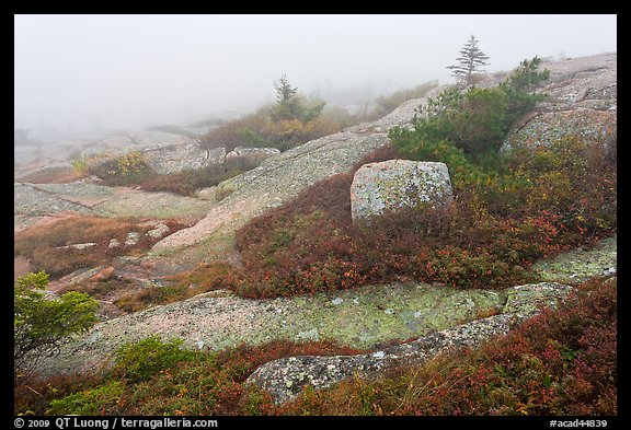 Summit of Cadillac Mountain during heavy fog. Acadia National Park (color)