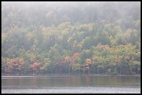 Foggy autumn slopes, Jordan Pond. Acadia National Park, Maine, USA.