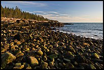 Coastline with boulders, late afternoon, Schoodic Peninsula. Acadia National Park, Maine, USA.