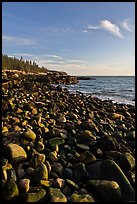 Round bouders, low tide coastline, Schoodic Peninsula. Acadia National Park ( color)