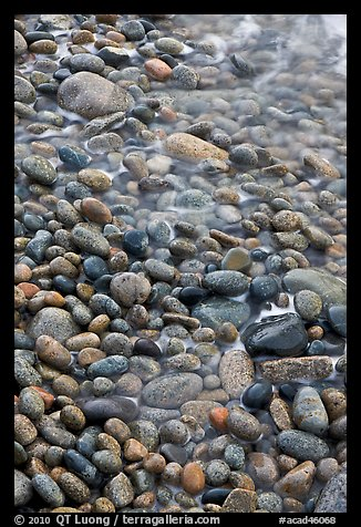 Close-up of pebbles and water, Schoodic Peninsula. Acadia National Park, Maine, USA.
