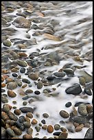 Close-up of pebbles in surf, Schoodic Peninsula. Acadia National Park ( color)