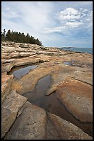 Slabs and puddles near Schoodic Point. Acadia National Park, Maine, USA. (color)
