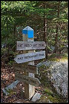 Signs at trail junction, Isle Au Haut. Acadia National Park, Maine, USA. (color)