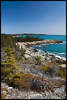 Rocky coastline, Isle Au Haut. Acadia National Park ( color)