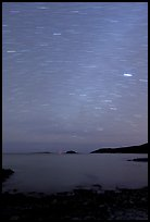Night sky with star trails, Schoodic Peninsula. Acadia National Park, Maine, USA.