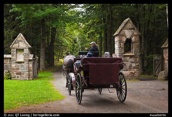 Carriage passing through carriage road gate. Acadia National Park (color)