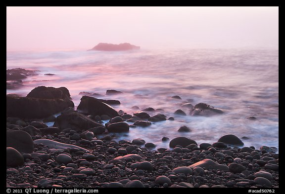 Boulders and ocean, foggy sunrise. Acadia National Park (color)