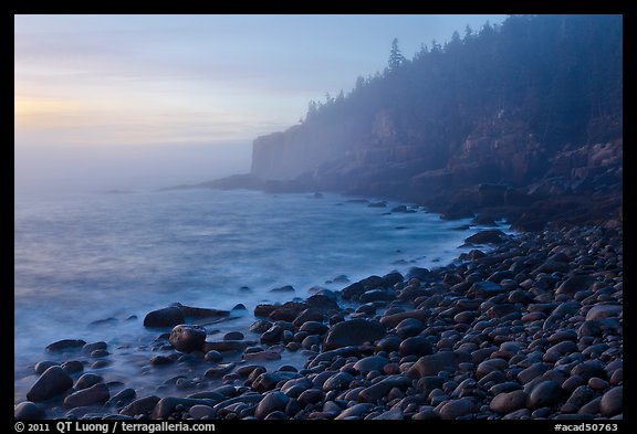 Otter cliff and cobblestones on misty morning. Acadia National Park, Maine, USA.