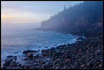 Otter cliff and cobblestones on misty morning. Acadia National Park ( color)