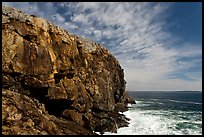 Tall granite headland. Acadia National Park ( color)