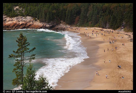 Sand Beach from above. Acadia National Park (color)