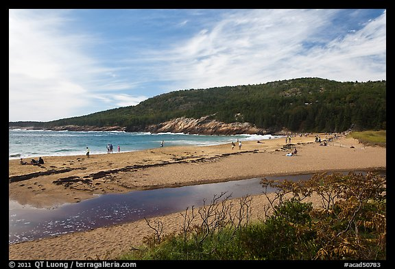 Tidal creek and Sand Beach. Acadia National Park (color)