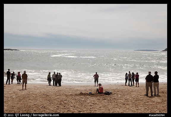 People looking at ocean from Sand Beach. Acadia National Park, Maine, USA.
