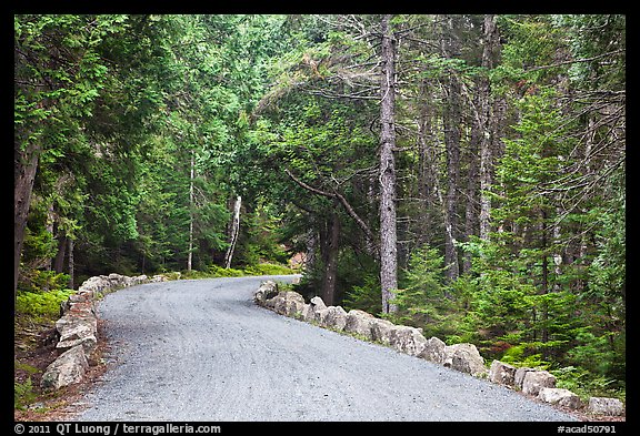 Carriage road in summer. Acadia National Park (color)