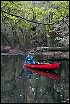 Canoing on Cedar Creek. Congaree National Park, South Carolina, USA. (color)