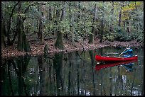 Man paddling a red canoe on Cedar Creek. Congaree National Park, South Carolina, USA. (color)