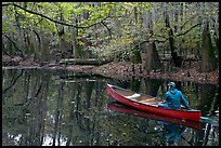 Canoist on Cedar Creek. Congaree National Park, South Carolina, USA.
