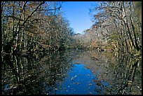 Wise Lake and reflections. Congaree National Park, South Carolina, USA. (color)