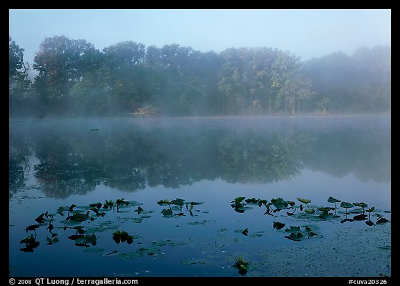 Mist on Kendall lake. Cuyahoga Valley National Park (color)