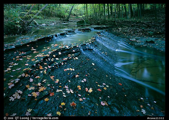 Cascades and fallen leaves. Cuyahoga Valley National Park (color)
