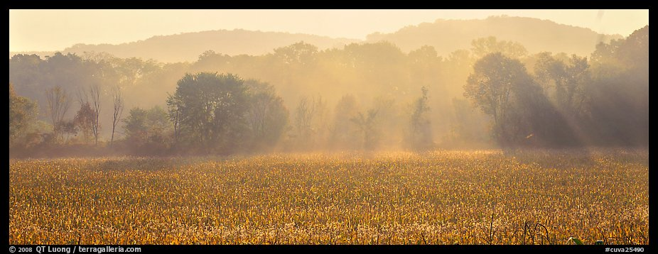 Sunrays in distant mist above field. Cuyahoga Valley National Park (color)