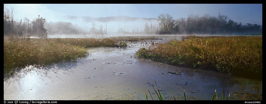 Misty marsh scenery, early morning. Cuyahoga Valley National Park (color)