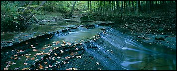 Autumn scene with stream cascading and fallen leaves. Cuyahoga Valley National Park (Panoramic color)