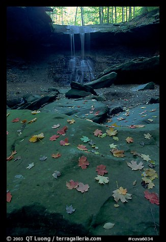 Fallen leaves on gren slabs and Blue Hen Falls. Cuyahoga Valley National Park (color)