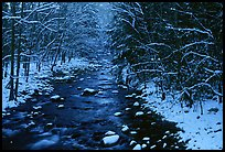 River in snowy forest, Tennessee. Great Smoky Mountains National Park, USA. (color)